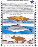 Adaptation in Animals Project