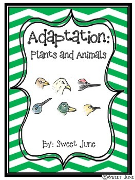 Adaptation of Plants and Animals