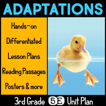 Adaptations 5E Science Unit Plan for Third Grade