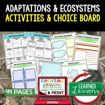 Adaptations Activities Choice Board, Digital Graphic Organizers
