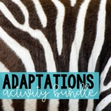 Adaptations Activity Bundle