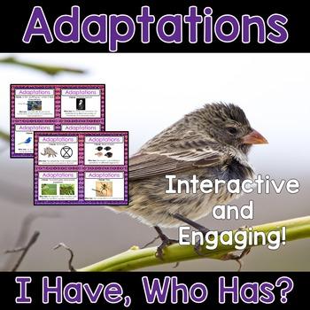 Adaptations Activity - I Have, Who Has?