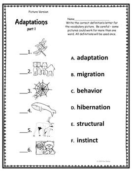 Adaptations Assessment Part 1