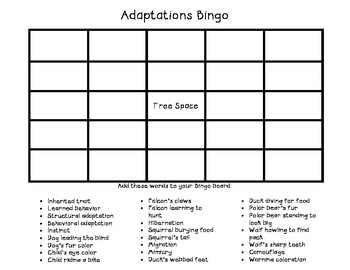 Adaptations Bingo Game