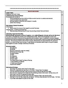 Adaptations - Full Lesson, game, poster, assessment