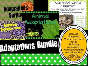 Adaptations Bundle