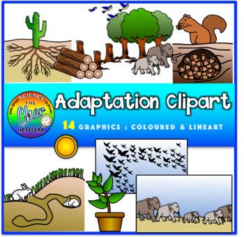 Adaptations Clipart