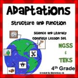 Adaptations: Complete Lesson Set Bundle (TEKS & NGSS)