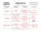 Adaptations Concept Map