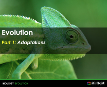 Evolution: Adaptations, Darwin, and Natural Selection
