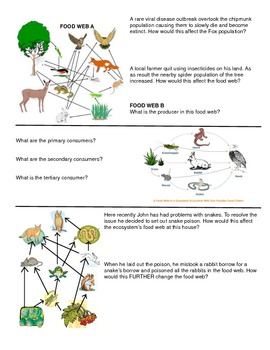 Adaptations & Ecosystems Note Page