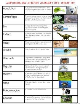 Animal Adaptations & Plant Adaptations & Extinction Vocabulary Sort