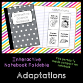 Adaptations Foldable