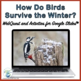 Adaptations How Do Birds Survive in Winter for Use with Go