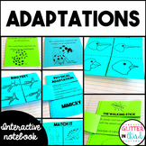 Animal Adaptations Science Interactive Notebook BUNDLE