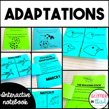 Adaptations  - Science Interactive Notebook