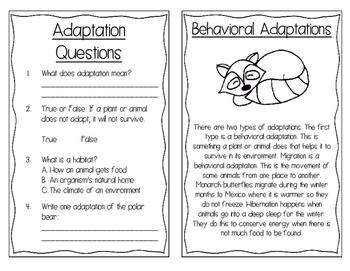 Adaptations Interactive Book