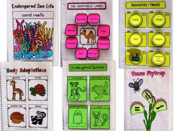 ADAPTATIONS Interactive Notebook  - {Animals and Plants} Behavioral / Structural