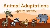 Adaptations Jigsaw