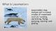 Adaptations: Locomotion PDF eBook