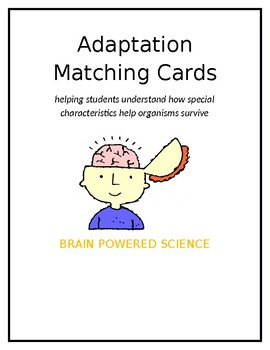 Adaptations Matching Cards