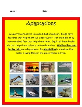 Adaptations NOTES/STUDY GUIDE