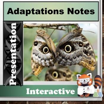 Adaptations Notes