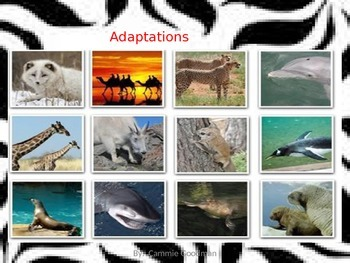 Adaptations POWERPOINT with NOTES