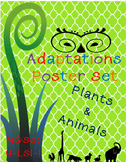 Adaptations Poster Set-Printables