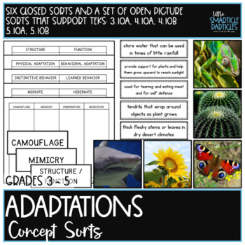 Adaptations: Science Concept Sorts