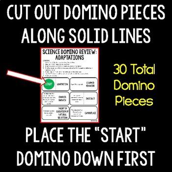 Adaptations Domino Review