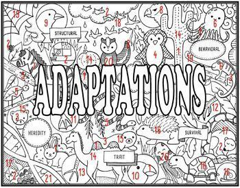 Adaptations Seek and Find Science Doodle Page