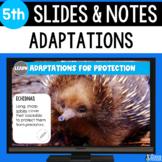 Adaptations Slides & Notes 5th Grade | Bonus Distance Learning