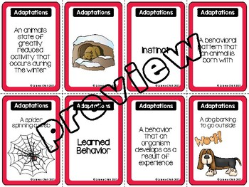 Adaptations Spoons Game