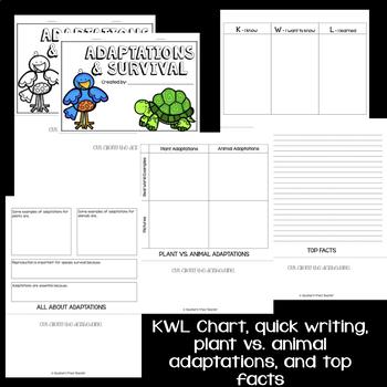 Adaptations & Survival Interactive Flip Book