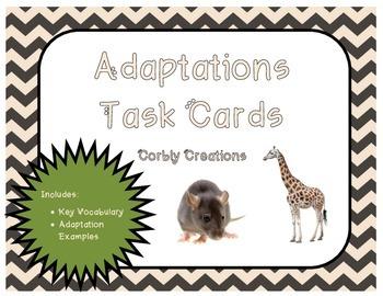 Adaptations Task Cards