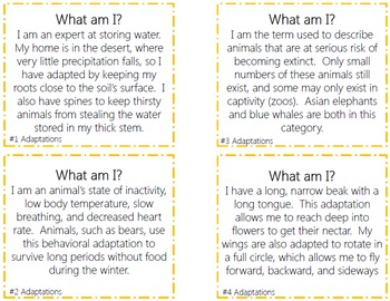 Adaptations Task Cards with PHOTOS
