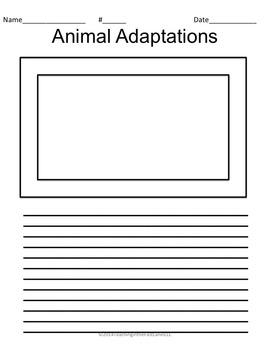 Adaptations TicTacToe Choice Board
