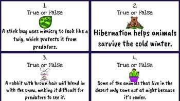Adaptations True or False Task Cards