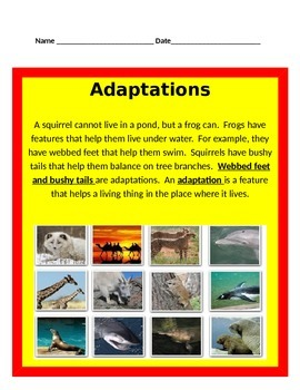 Adaptations UNIT BUNDLE  -Science