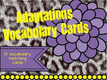Adaptations Vocabulary
