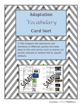 Adaptations Vocabulary Sort- TEKS 5.10A aligned to STAAR