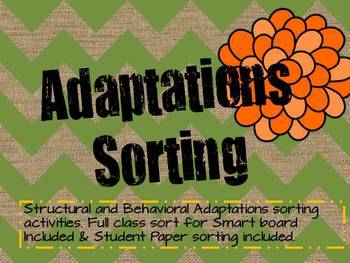 Adaptations Vocabulary Sorting