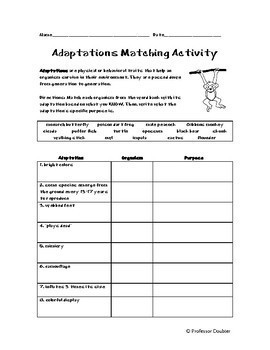 Adaptations Worksheet Matching Activity GREAT FOR SUB PLAN or HOMEWORK!