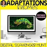 Adaptations and Biomes Scavenger Hunt Distance Learning