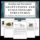 Adaptations and Evolutionary Structures: Reading and Powerpoint Mini lesson