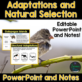 Adaptations and Natural Selection PowerPoint and Notes