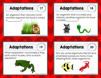 Adaptations and Natural Selection Task Cards