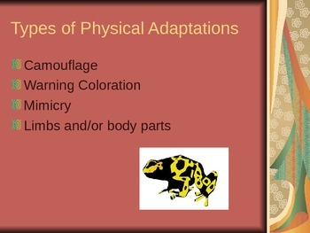 Adaptations and Survival