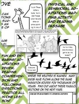 Adaptations behavioral physical activity mapping reading e